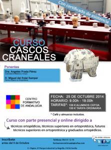 Curso CASCOS CRANEALES