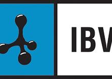 Oferta formativa on line del IBV en Rehabilitación y Autonomía Personal